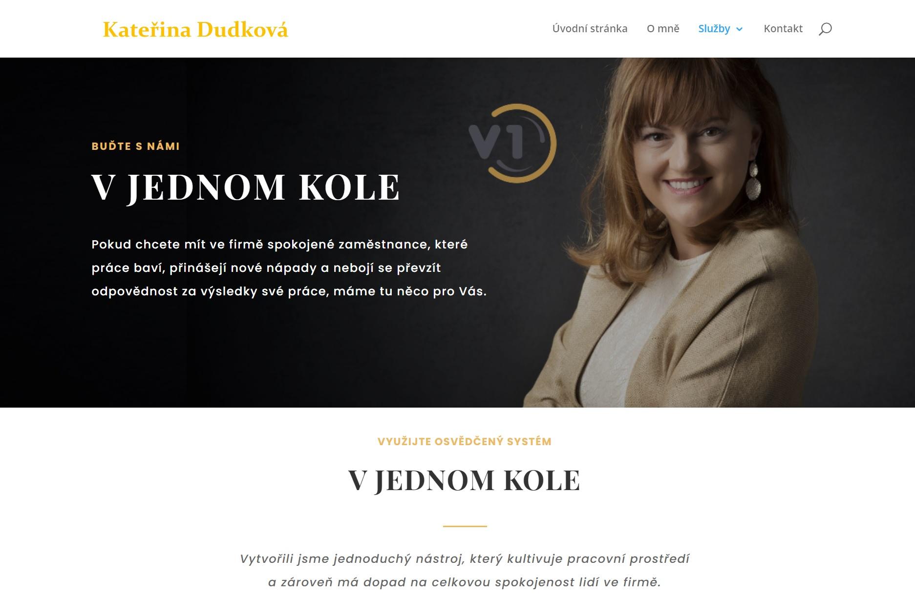 helispro.cz, naseprace, tvorba webu, marketing, komunikace, strategie